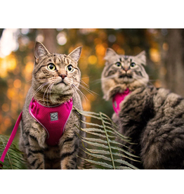 RC Pet RC Pets Adventure Kitty Harness