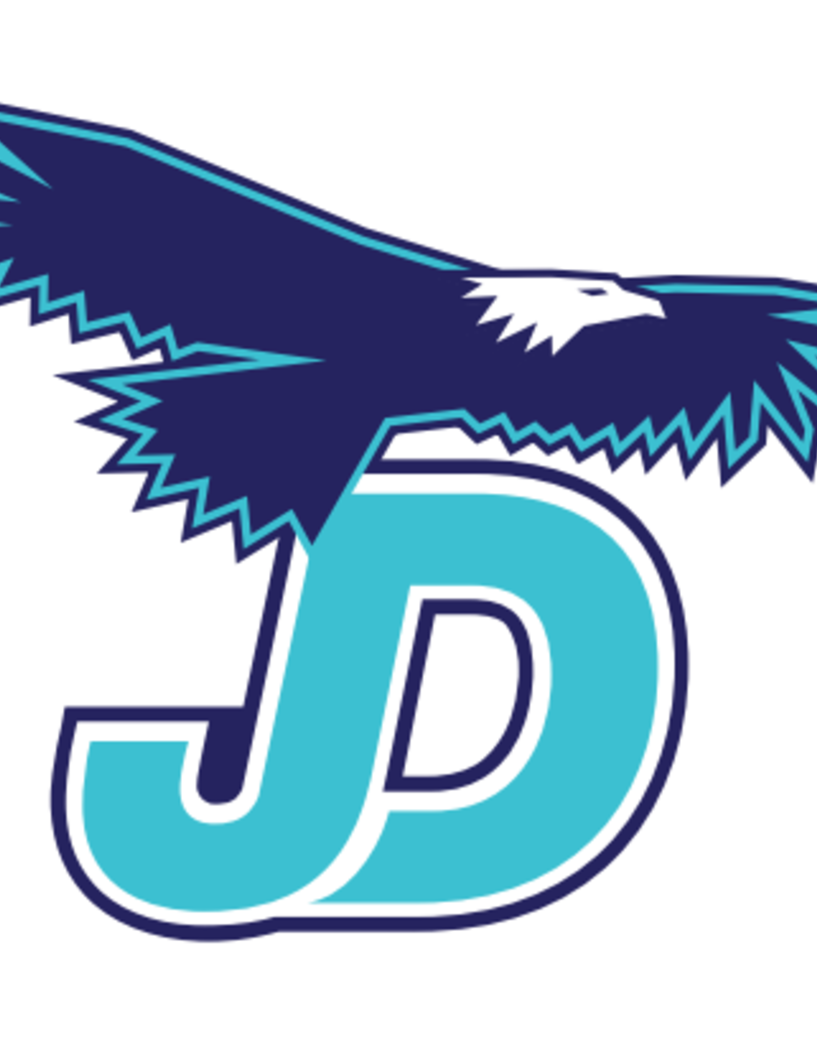 NON-UNIFORM Juan Diego Large Decal, navy/white/teal