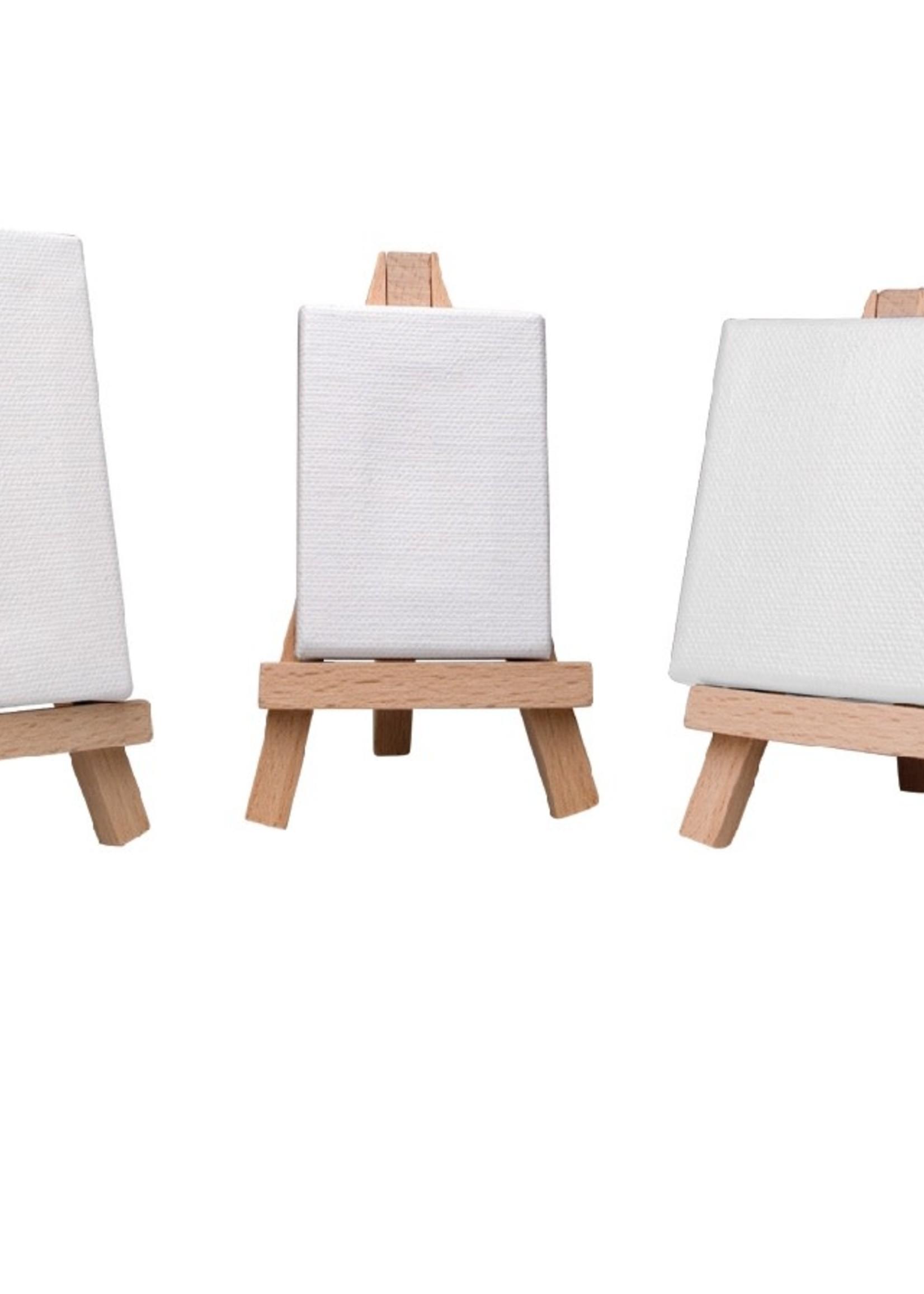 ART ALTERNATIVES MINI CANVAS 100/DP