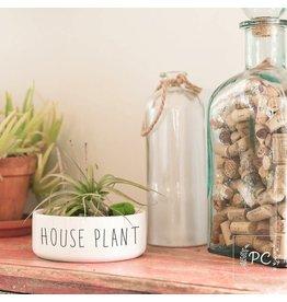 Praire Chick Prints House Plant  - Planter