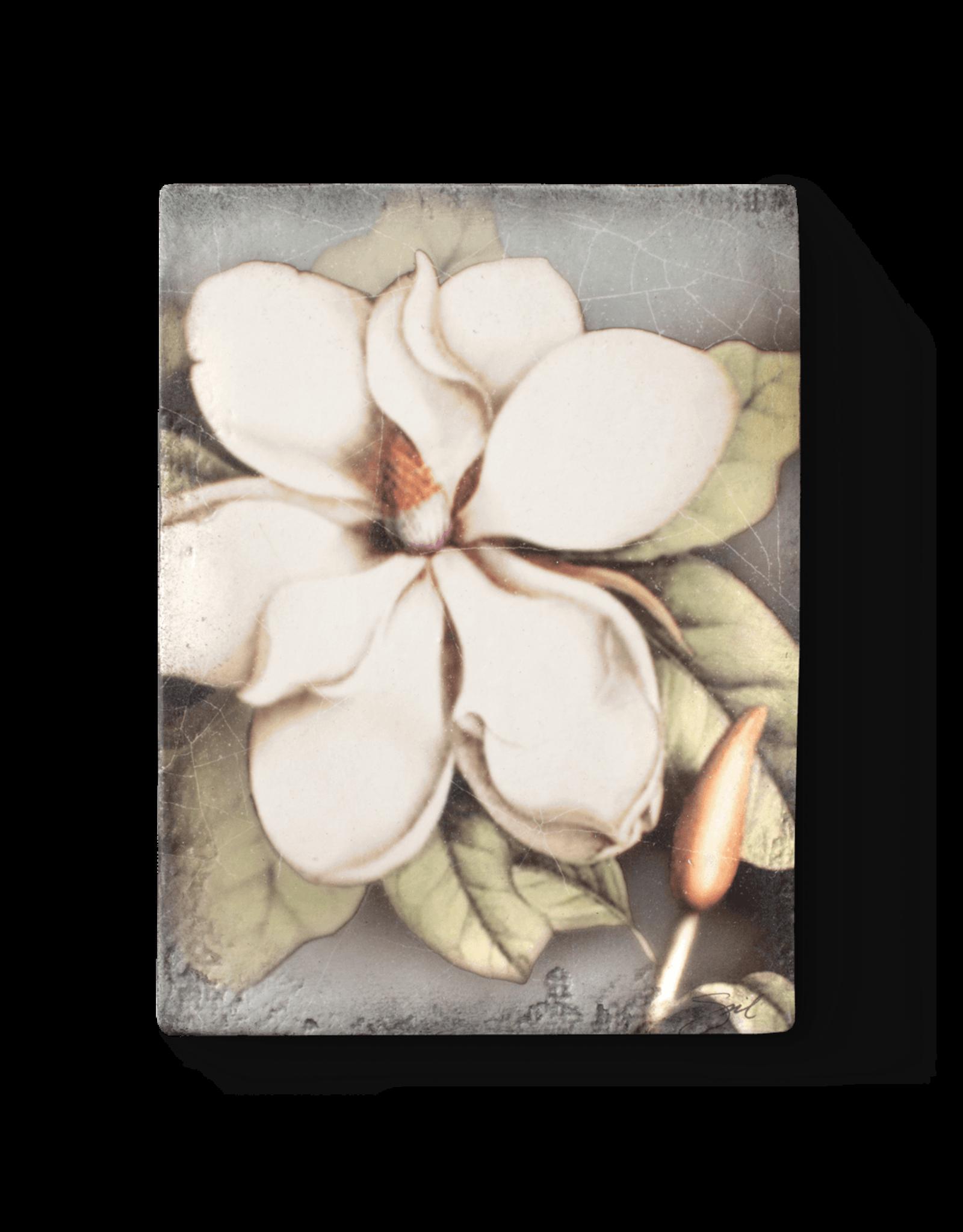 Sid Dickens T301 Magnolia