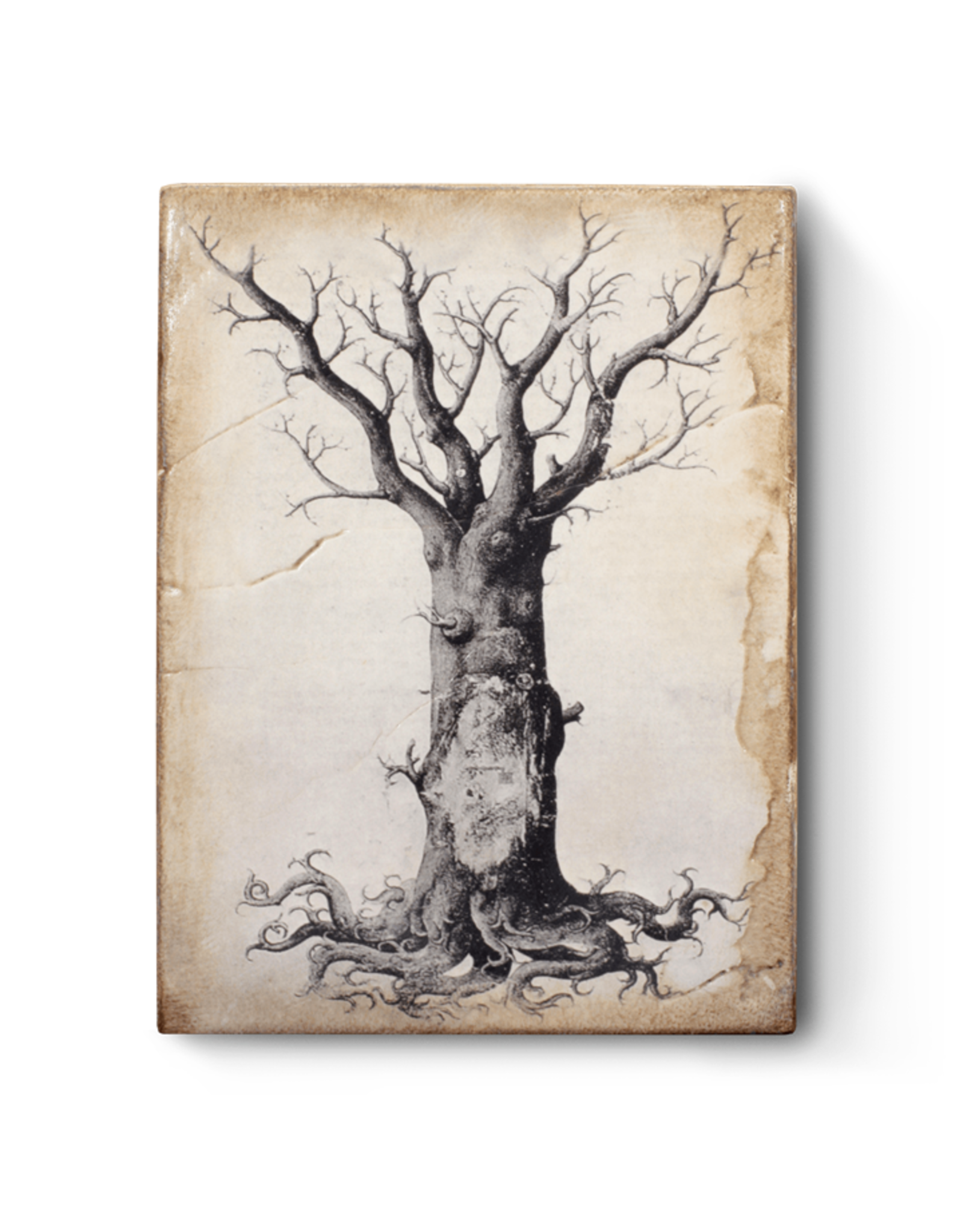 Sid Dickens T125 Medieval Tree Of Life