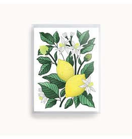Linden Paper Co. Lemon Delight Card | Set of 8
