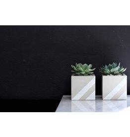 Mind The Minimal Cube Planter - Blanc w/  Plant