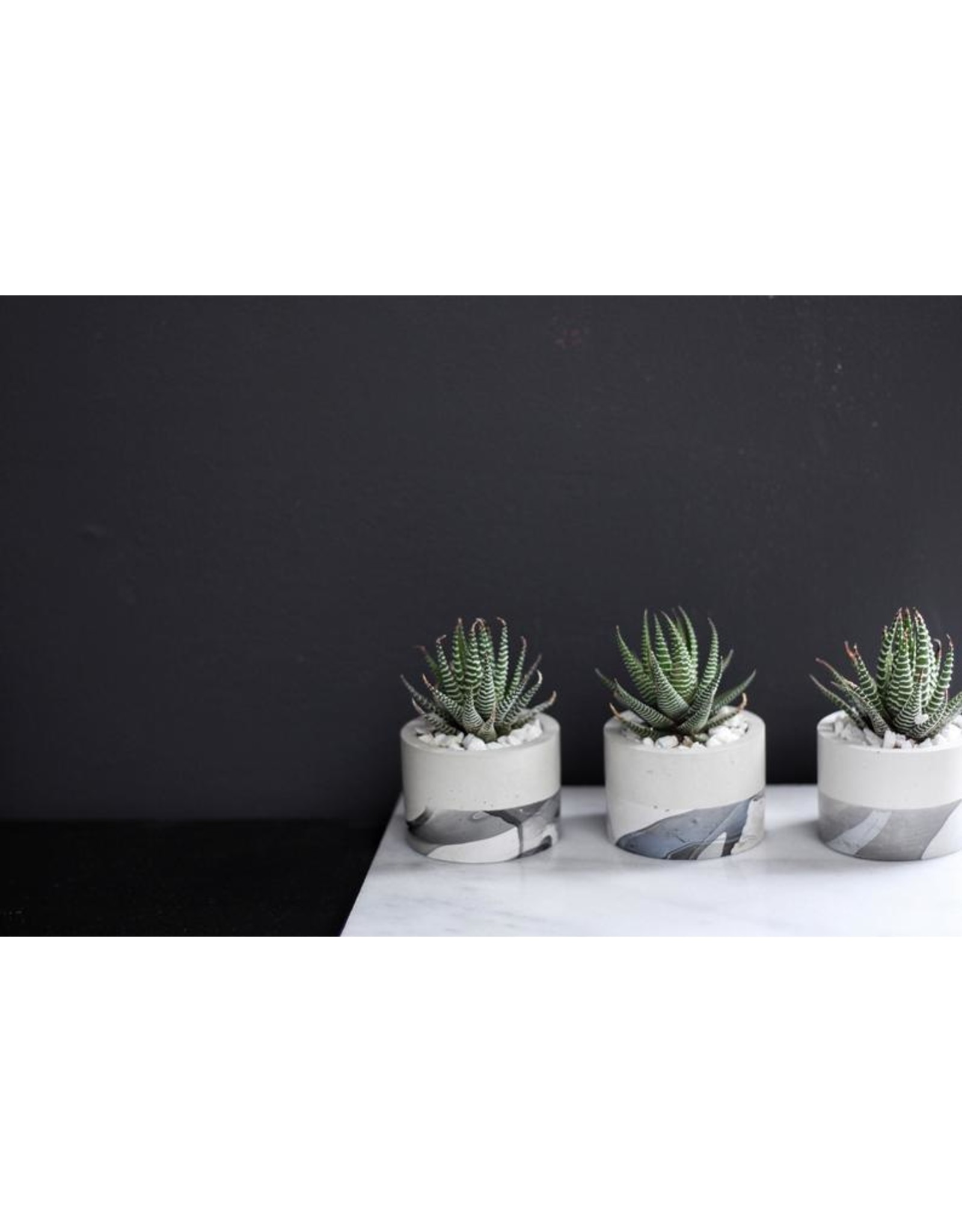 Mind The Minimal Cylinder Planter - Marble w/  Plant