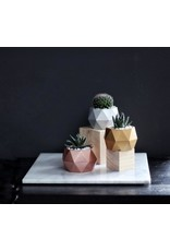 Mind The Minimal Sphere Planter - White w/  Plant