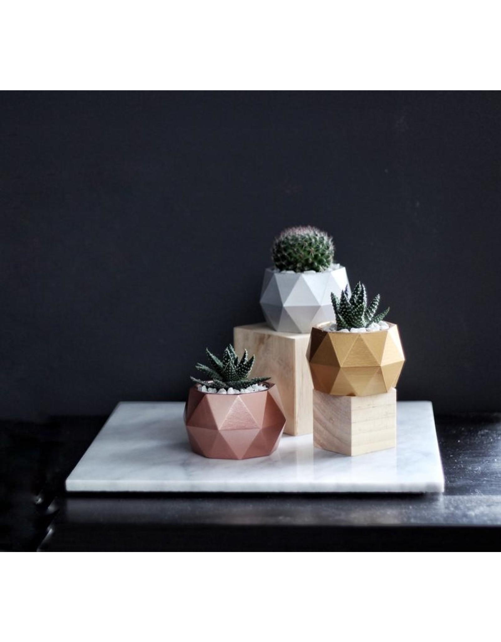 Mind The Minimal Sphere Planter - Blush Pink w/  Plant