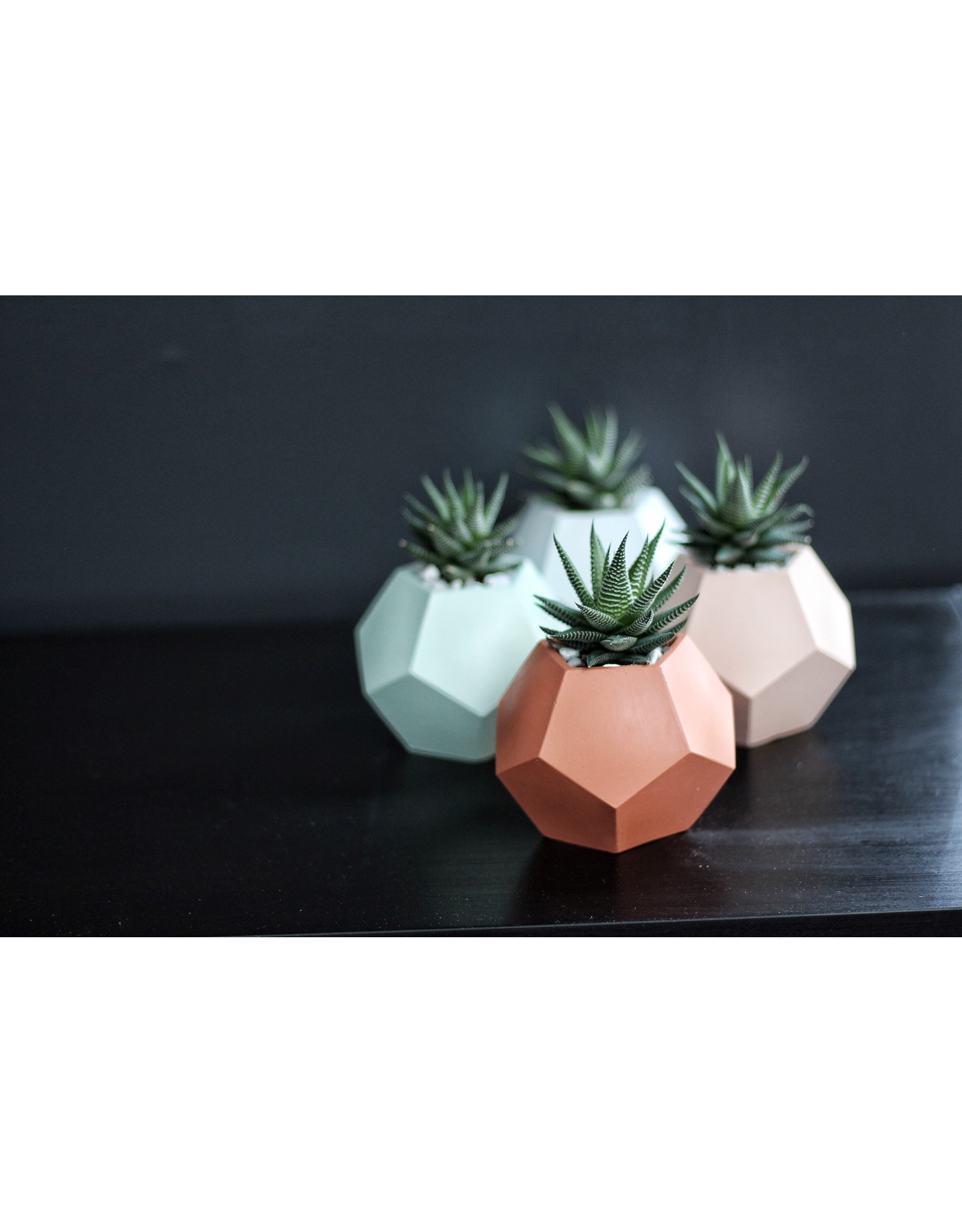 Mind The Minimal Dode Planter - Mint Green w/  Plant