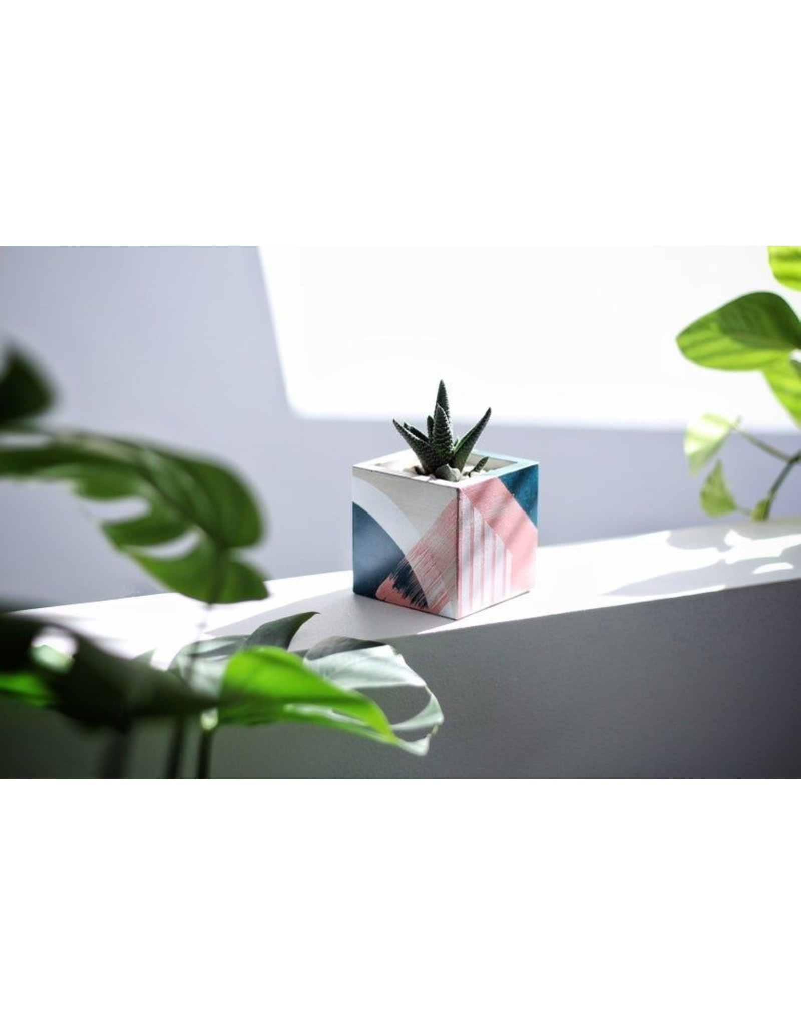 Mind The Minimal Cube Planter - Abstract w/  Plant
