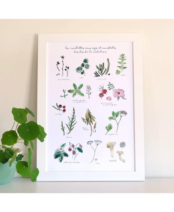 Affiche 9 X 9, Herbier