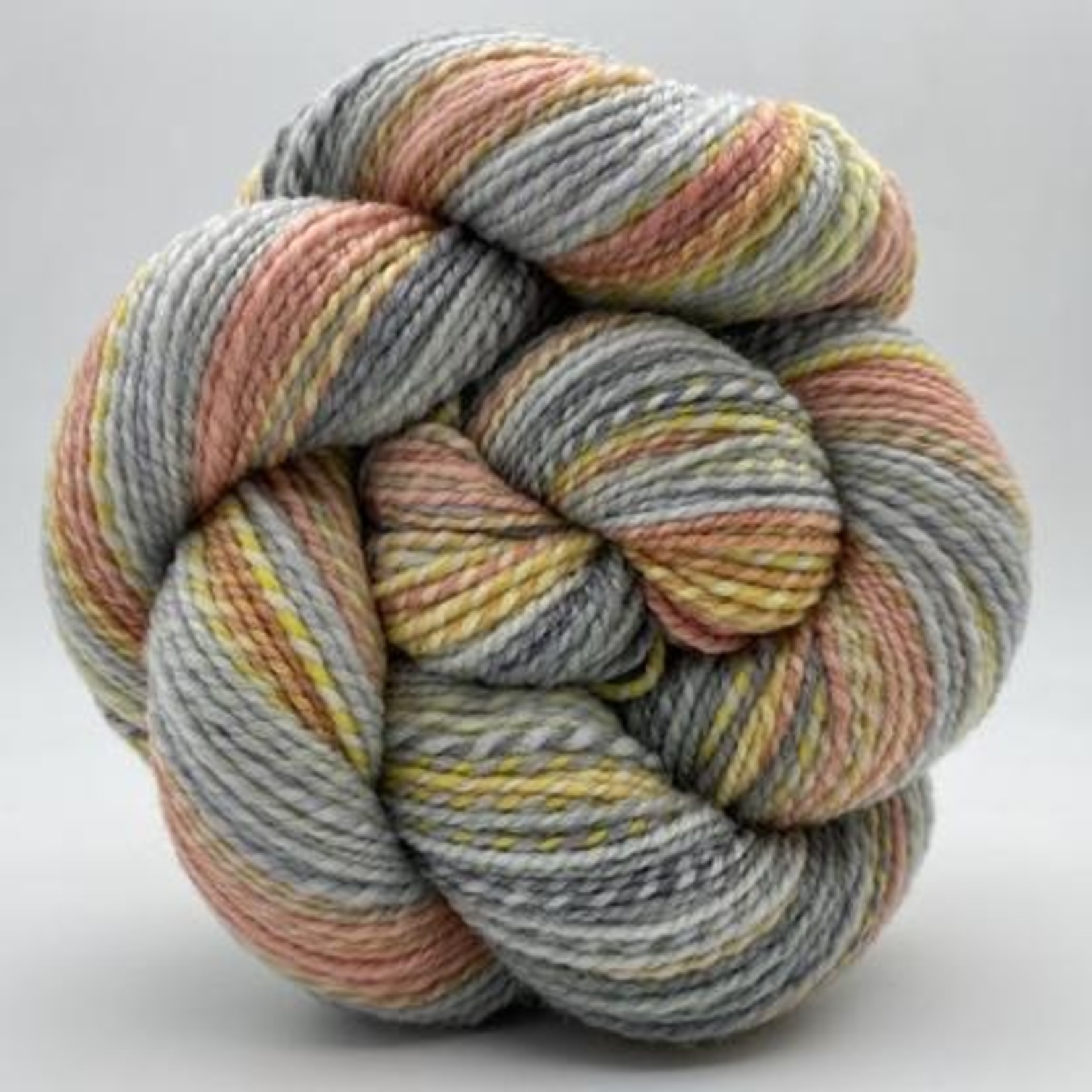 Spincycle Yarn Dyed in the Wool, Verba Volant