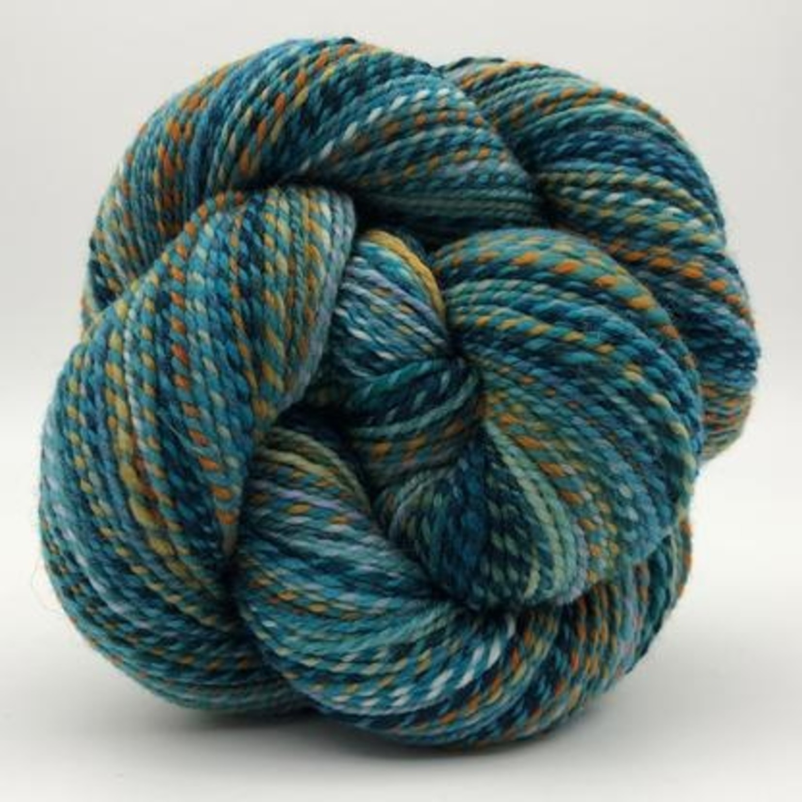 Spincycle Yarn Dyed in the Wool, The Family Jewel