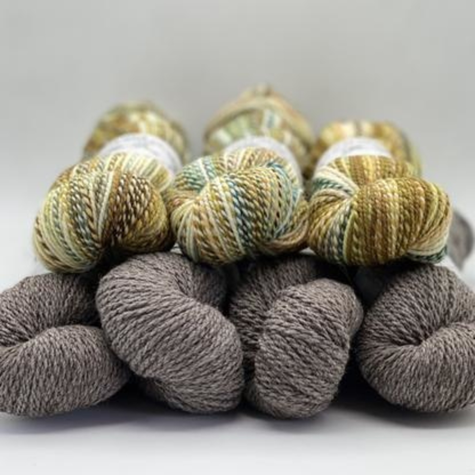 Spincycle Yarn Dyed in the Wool, Summer Love