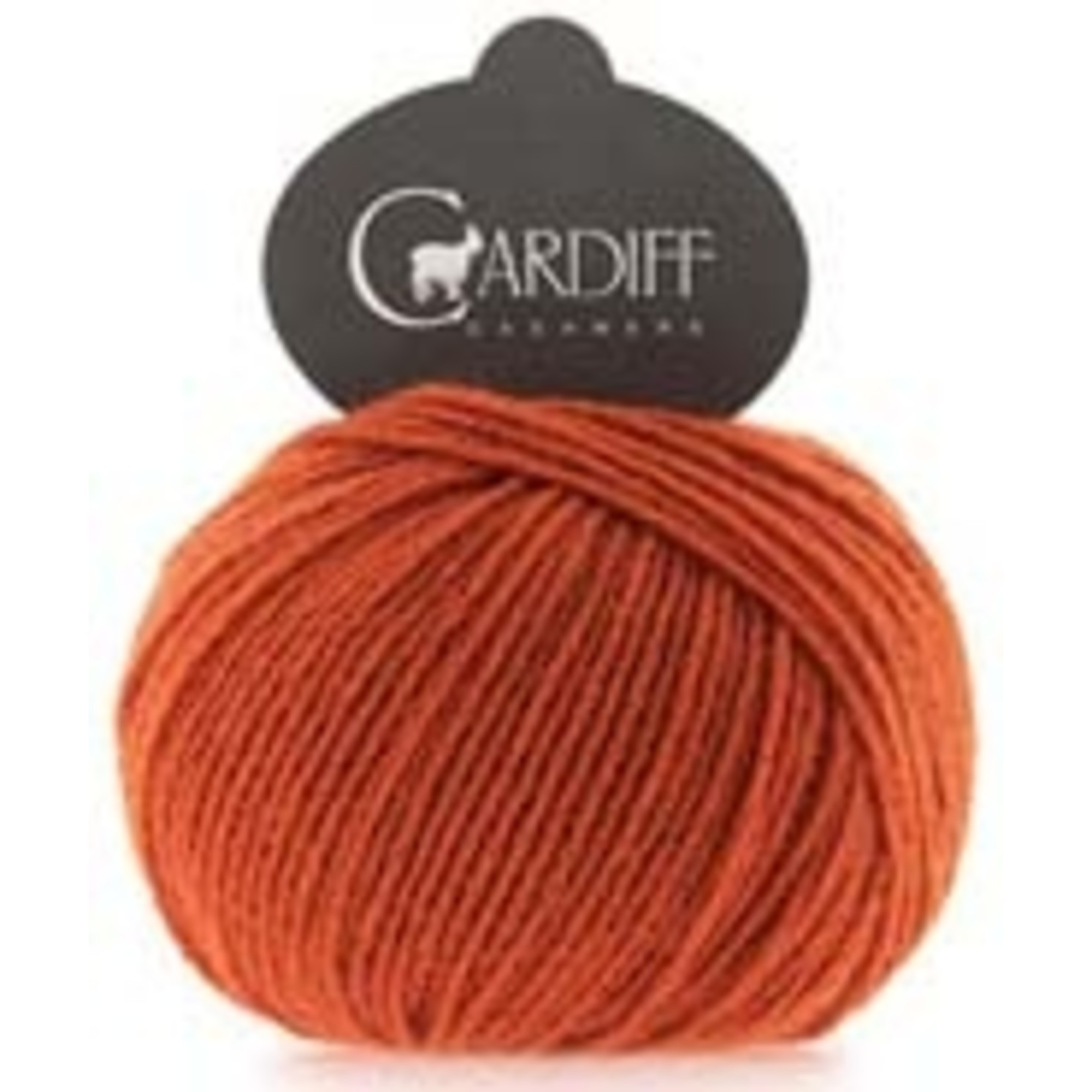 Trendsetter Yarns Cardiff Cashmere, 675, Take