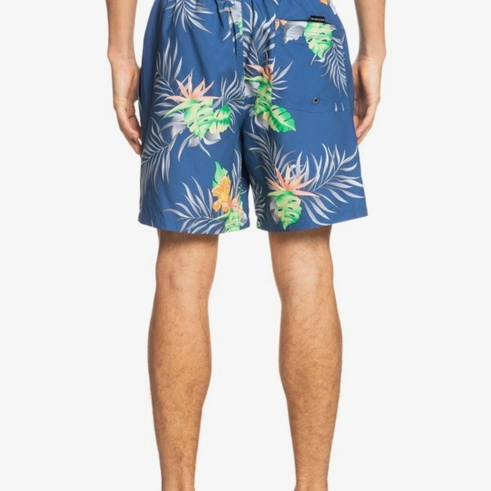 Quiksilver Quiksilver Paradise Express Volley Shorts