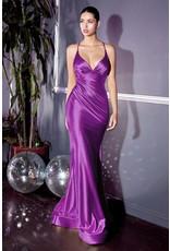 Cinderella Divine CH236 Cinderella Devine Orchid XS
