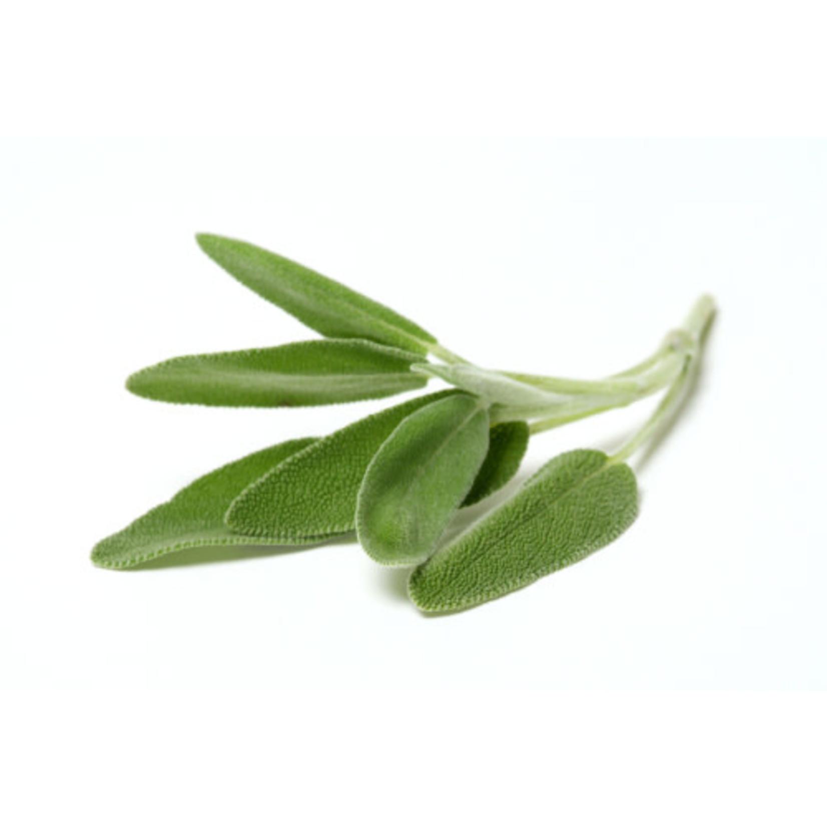 Sage (seed pkg)