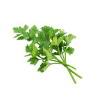 Parsley (seed pkg)