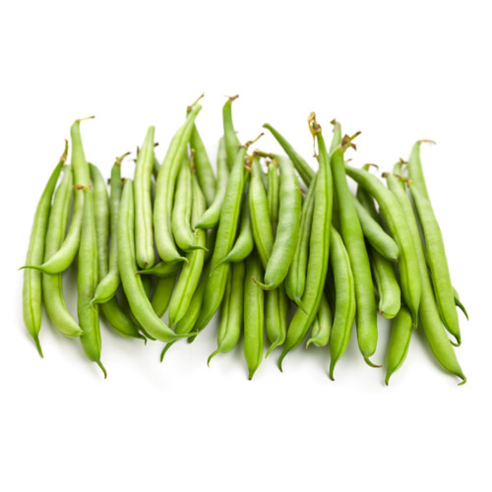 Beans - Pole Beans (seed pkg)