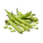Beans - Novelty Beans (seed pkg) Broad Windsor Fava