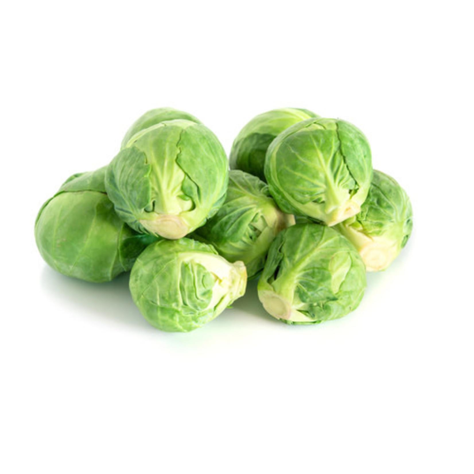 Brussel Sprouts (seed pkg) - Long Island Improved