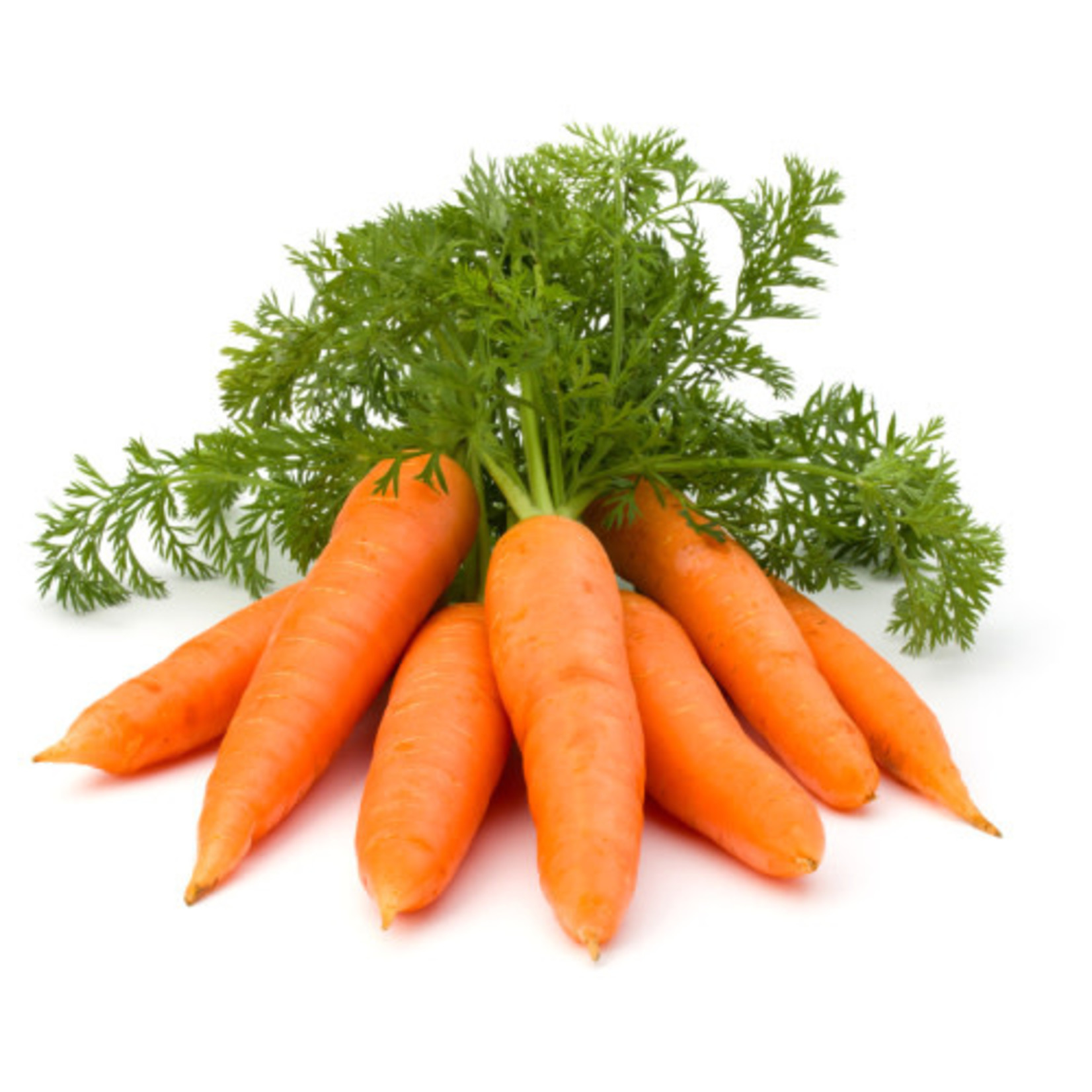 Carrots (seed pkg)