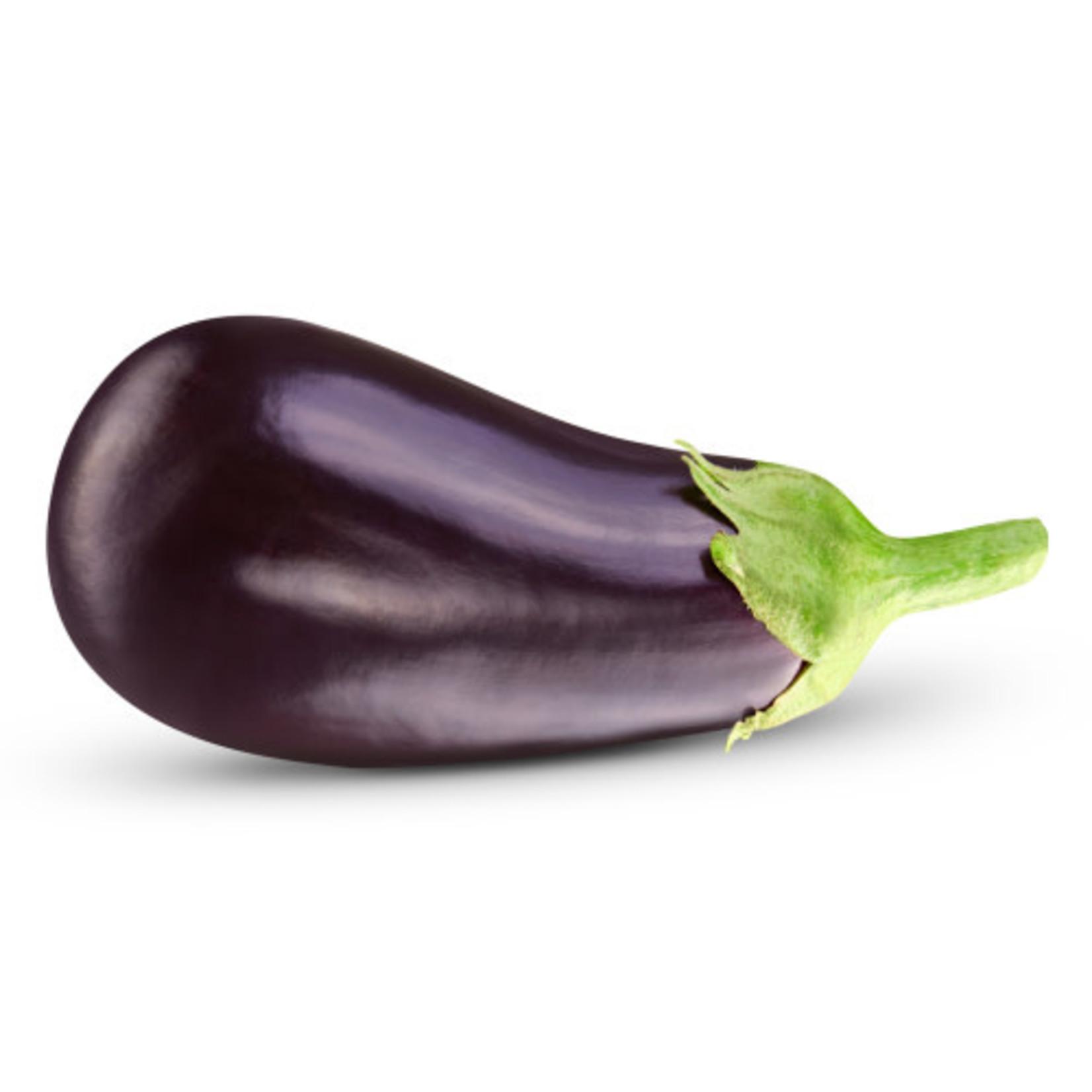 Eggplant (seed pkg) - Black Beauty