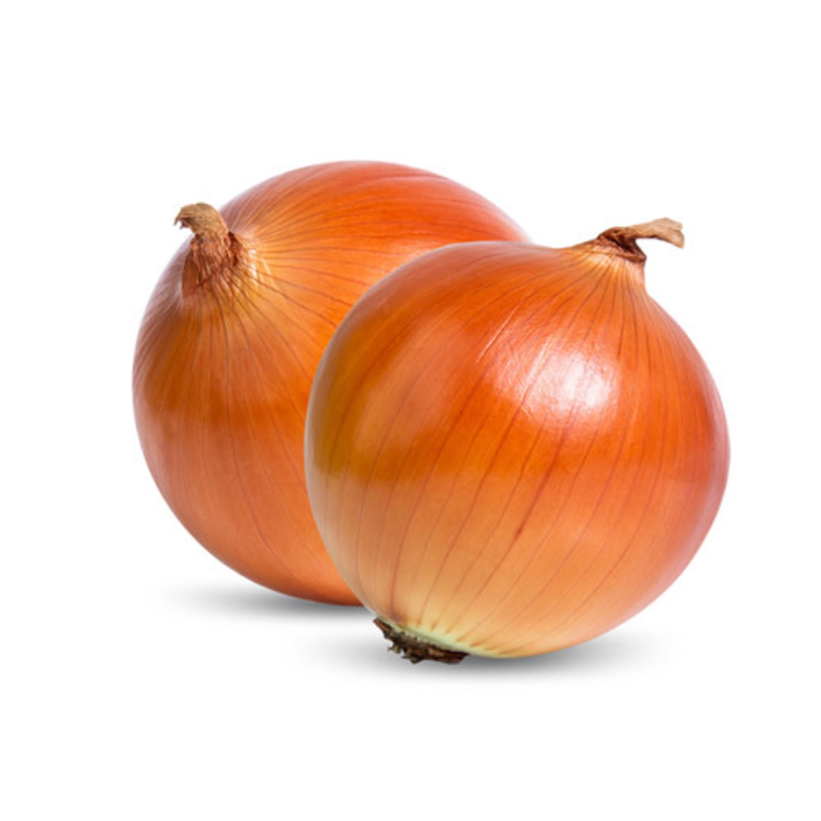 Onion (seed pkg)
