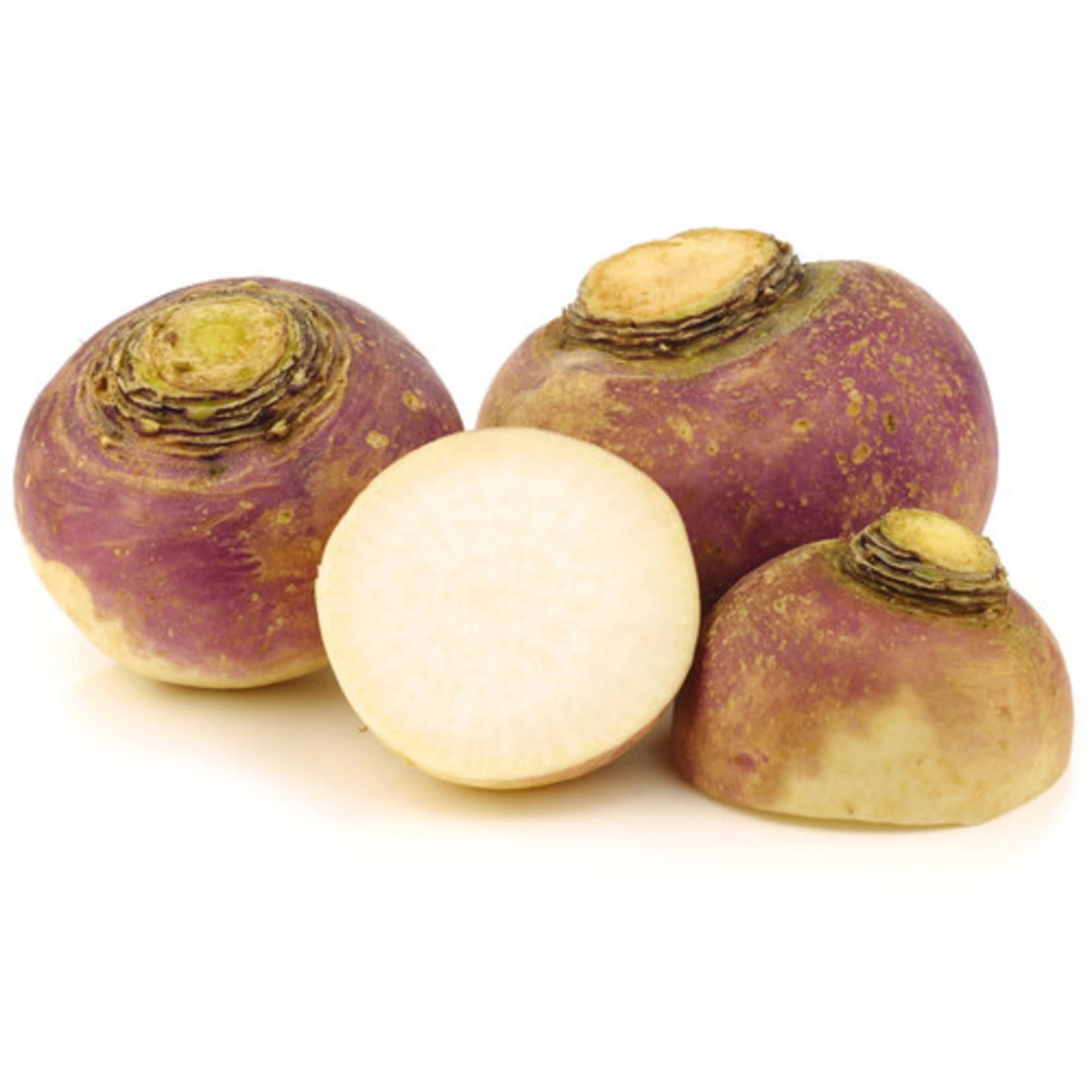 Rutabaga (seed pkg) - OSC Laurentian