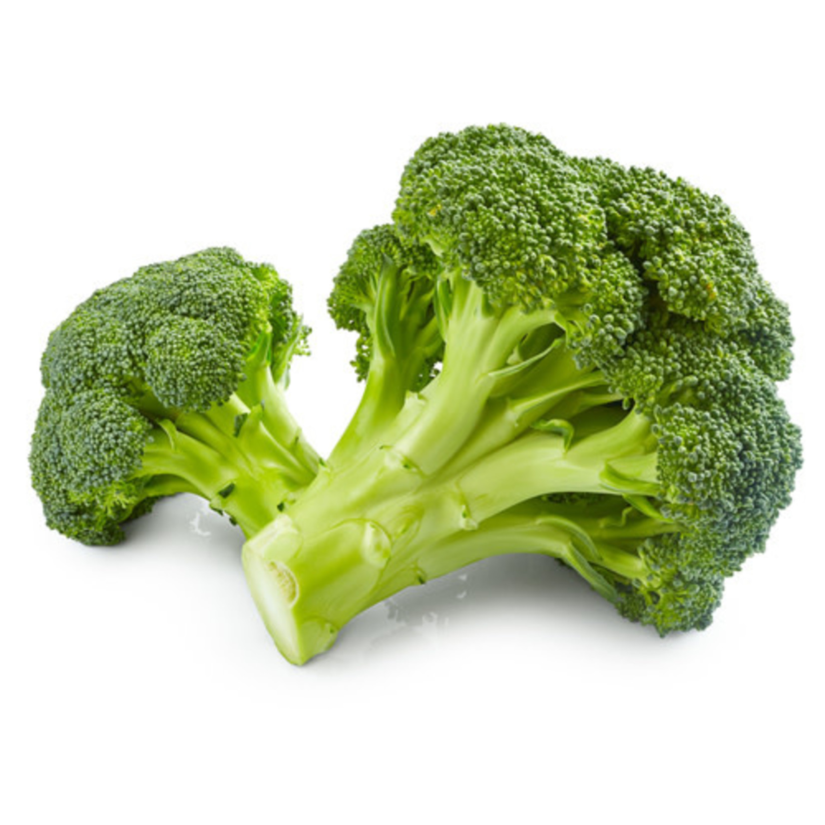 Broccoli ORGANIC (seed pkg) - Green Sprouting