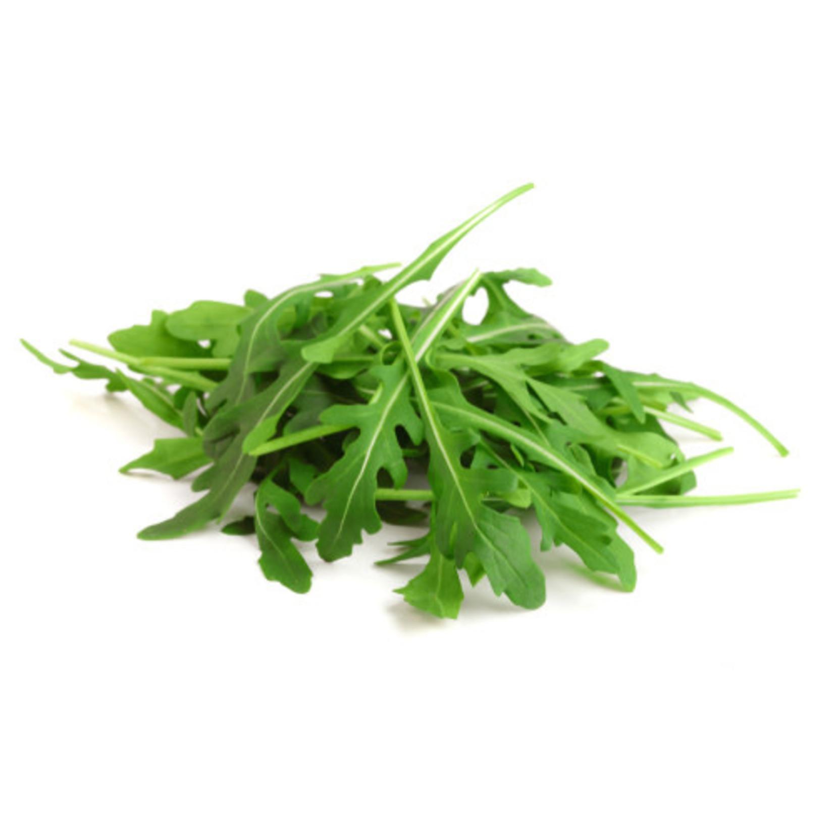 Arugula ORGANIC (seed pkg) - Roquette