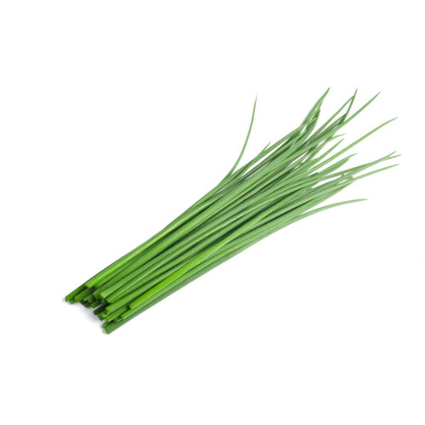 Chives ORGANIC (seed pkg)