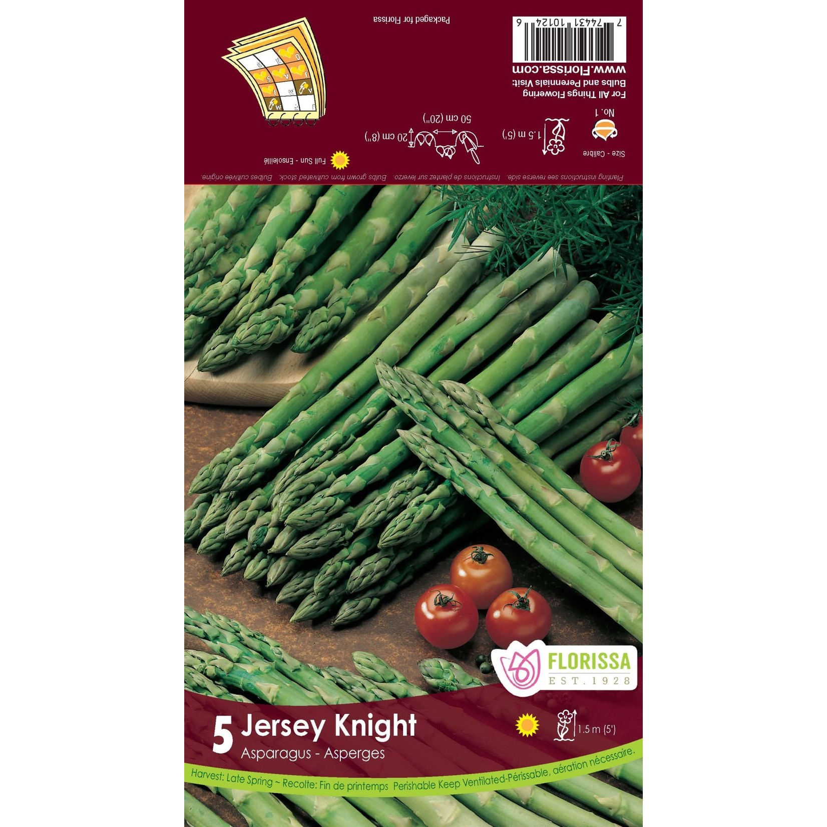 Asparagus (root pkg) - Jersey Knight (5 roots)