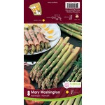 Asparagus (root pkg) - Mary Washington (8 roots)