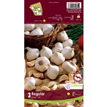 Garlic (bulb pkg) White (3 bulbs)