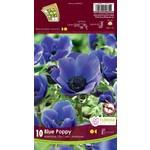 Anemone De Caen (bulb pkg) Blue Poppy (10 bulbs)