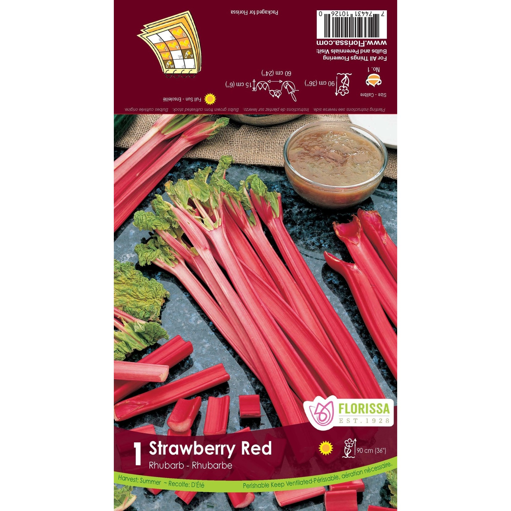 Rhubarb (root pkg) Strawberry Red (1 root)