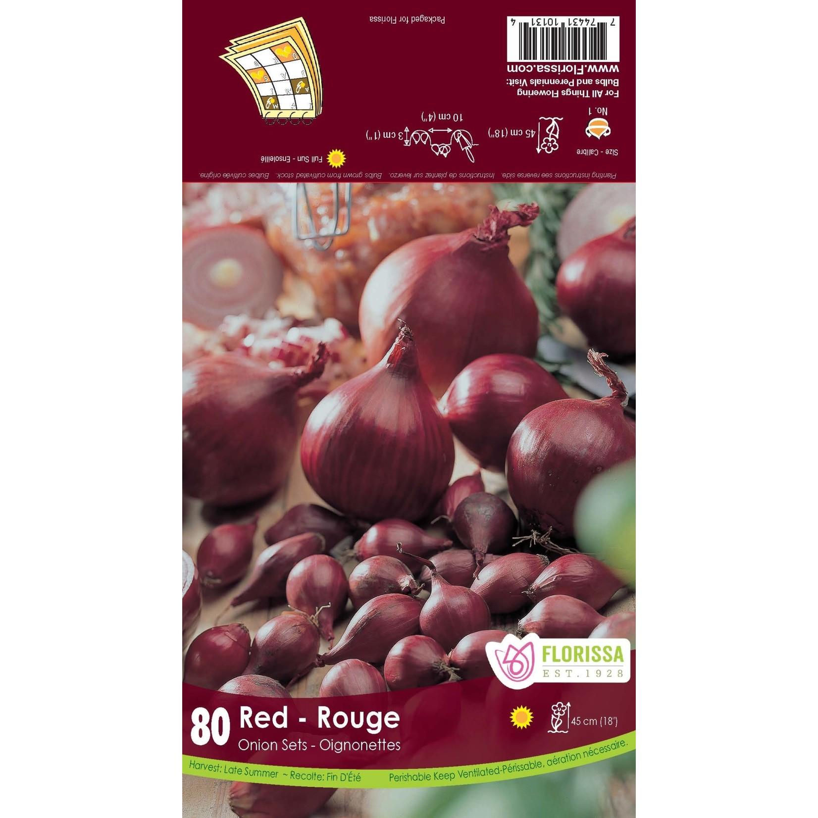 Onion Set : Red (80 bulbs)