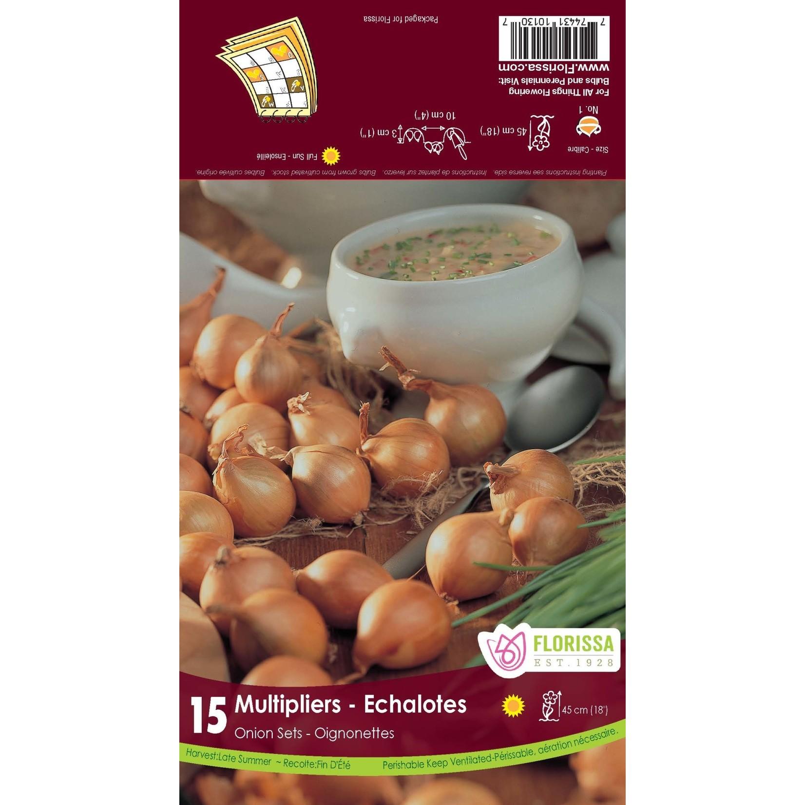 Onion Set: Multiplier (15 bulbs)