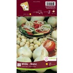 Onion Set: White (80 bulbs)