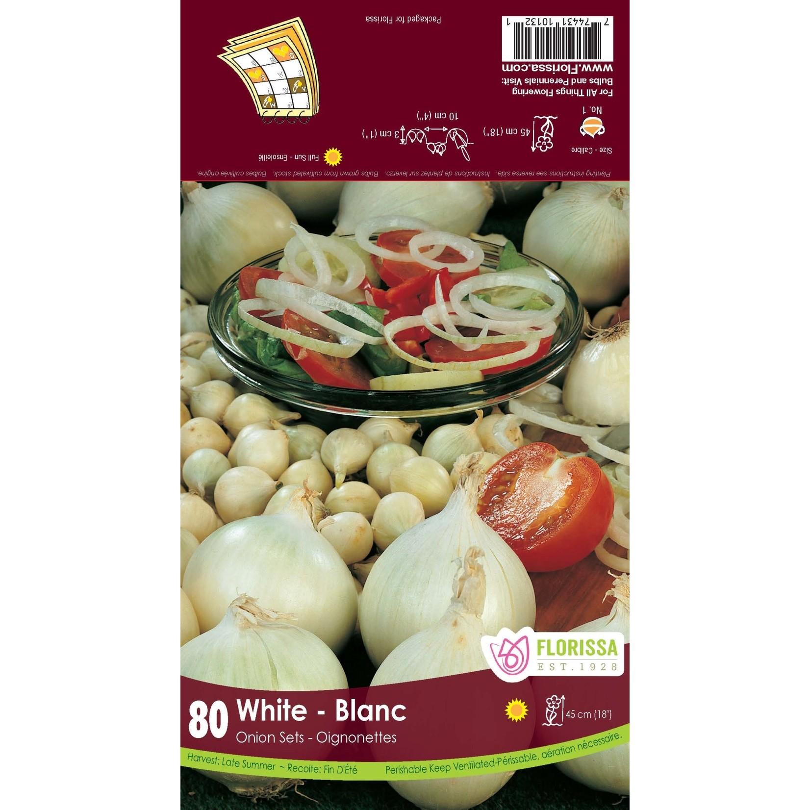 Onion Set: White (80 bulbs)