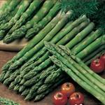 Fruit & Vegetable Roots/Bulbs