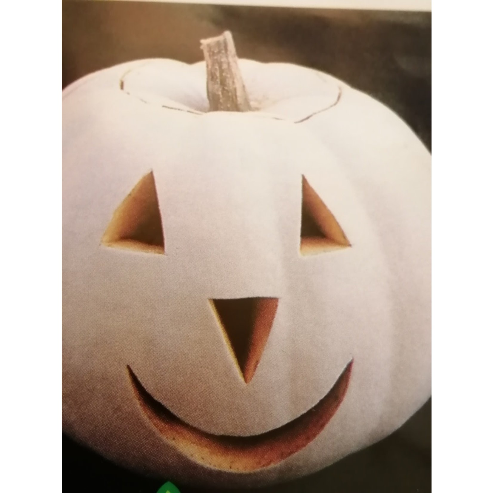Pumpkins (seed pkg)