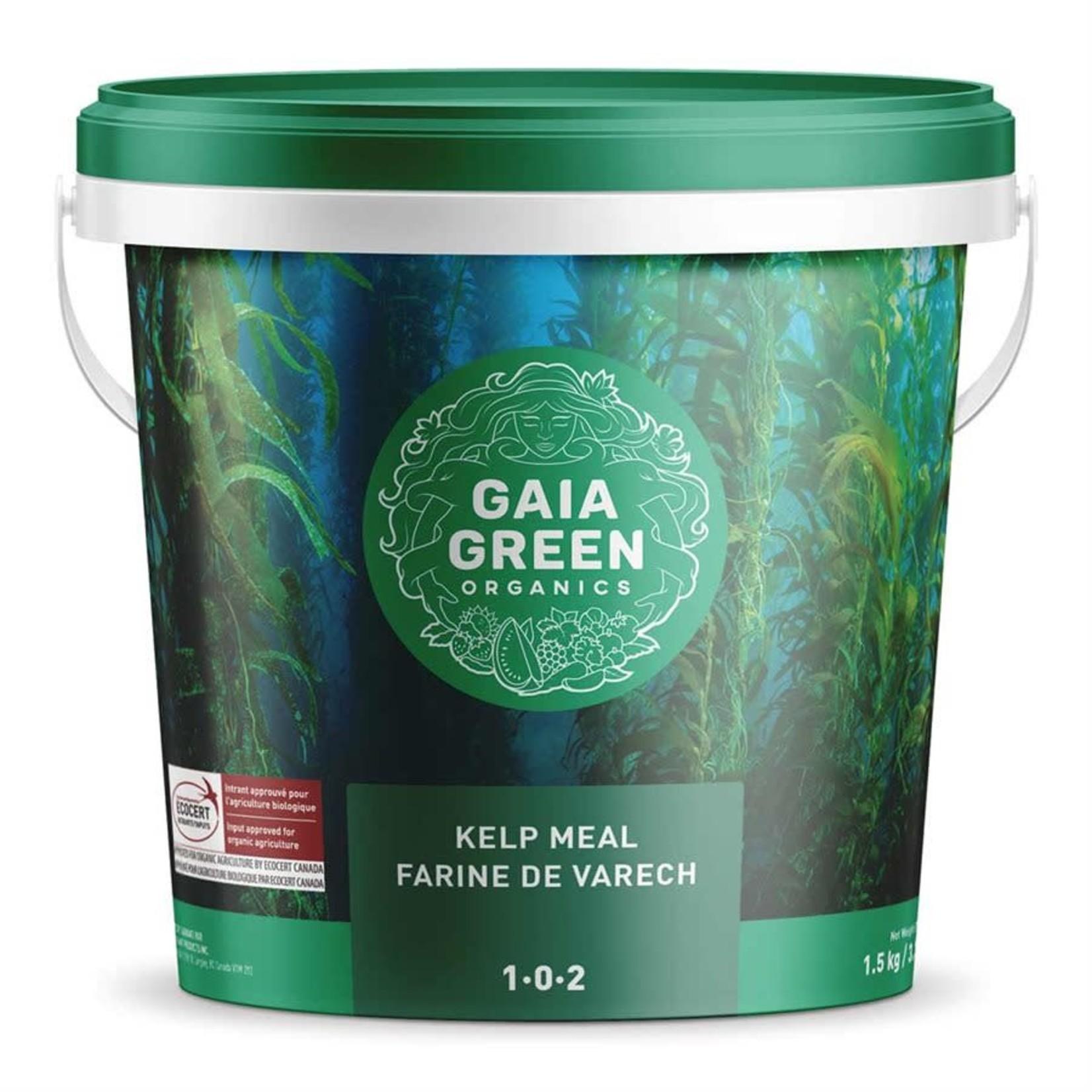 Gaia Green Kelp Meal 1-0-2, 1.5kg