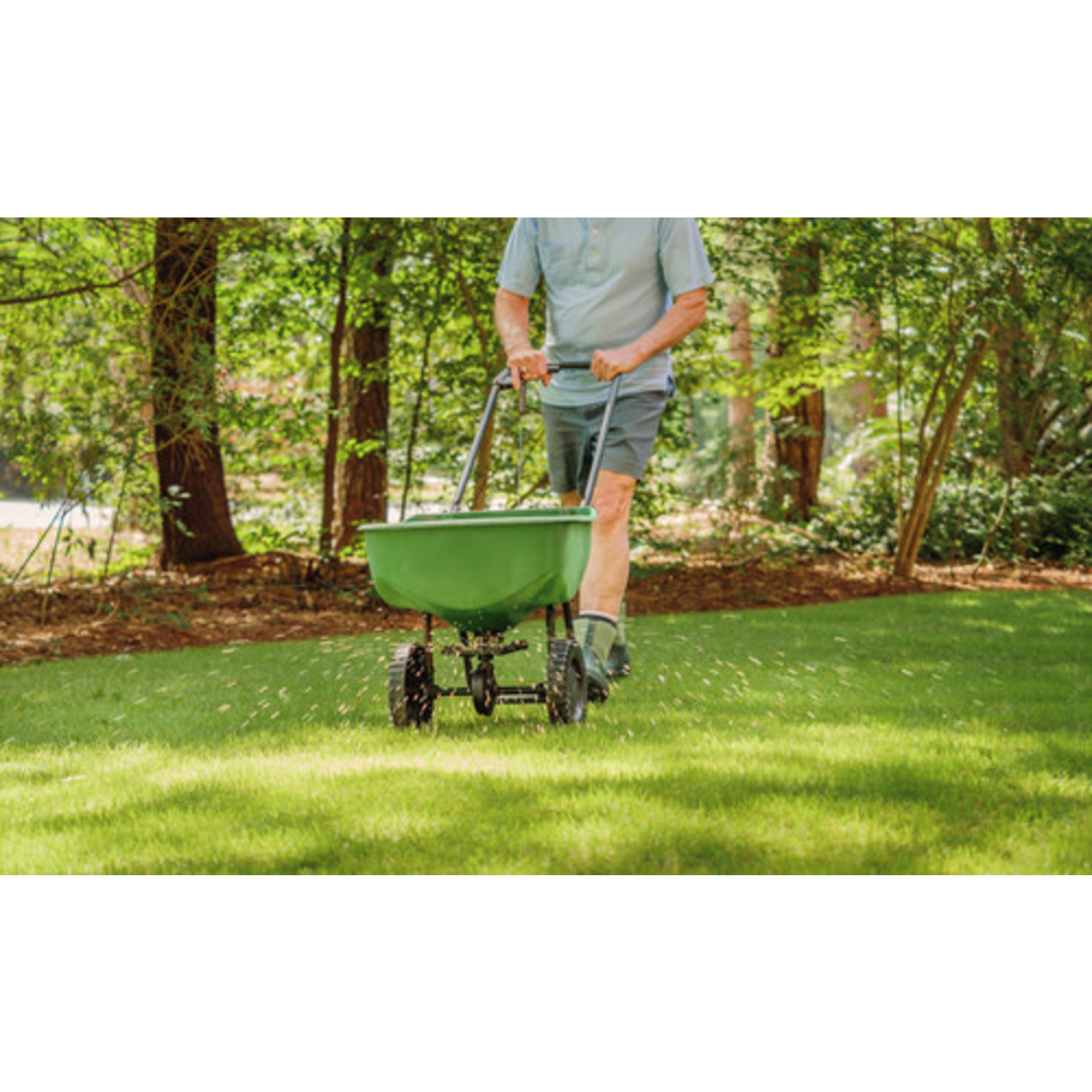 Lawn Fertilizer: Starter 8-32-16 - 25 kg