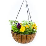 Hanging Spring Basket - coconut liner