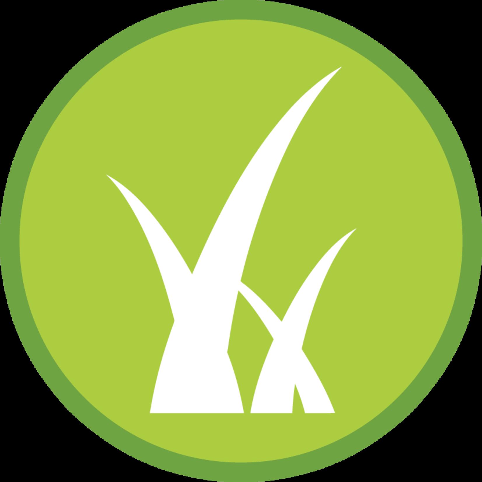 Lawn Fertilizer: Spring Builder 18-3-6
