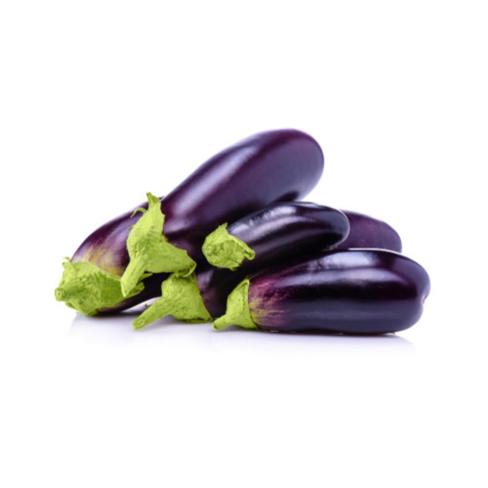 """Eggplant - 4"""""""