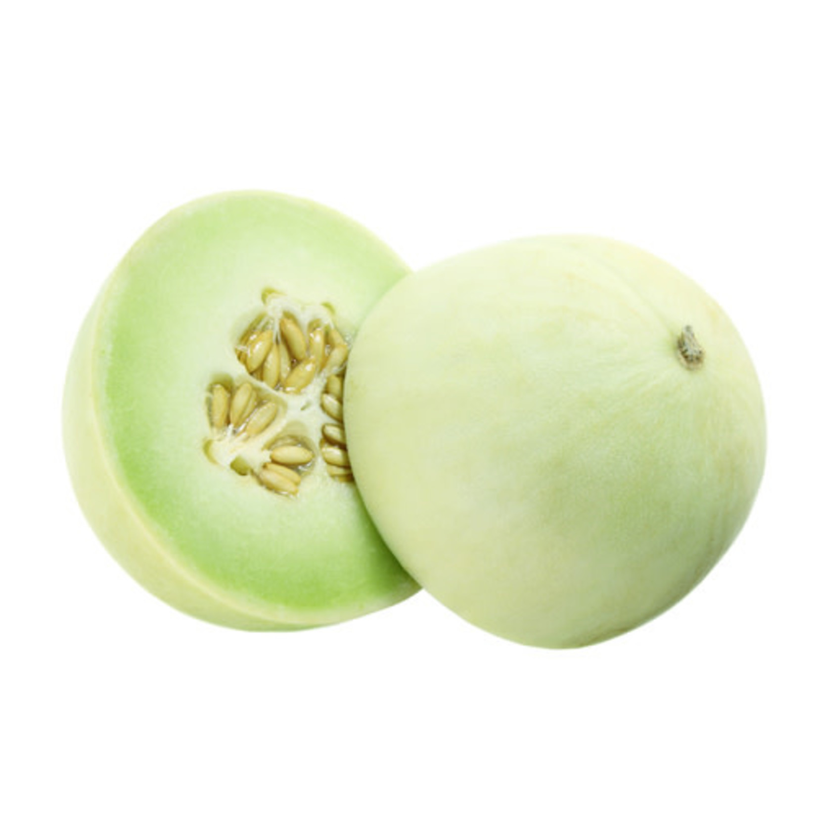 "Honeydew Melon - 4"""