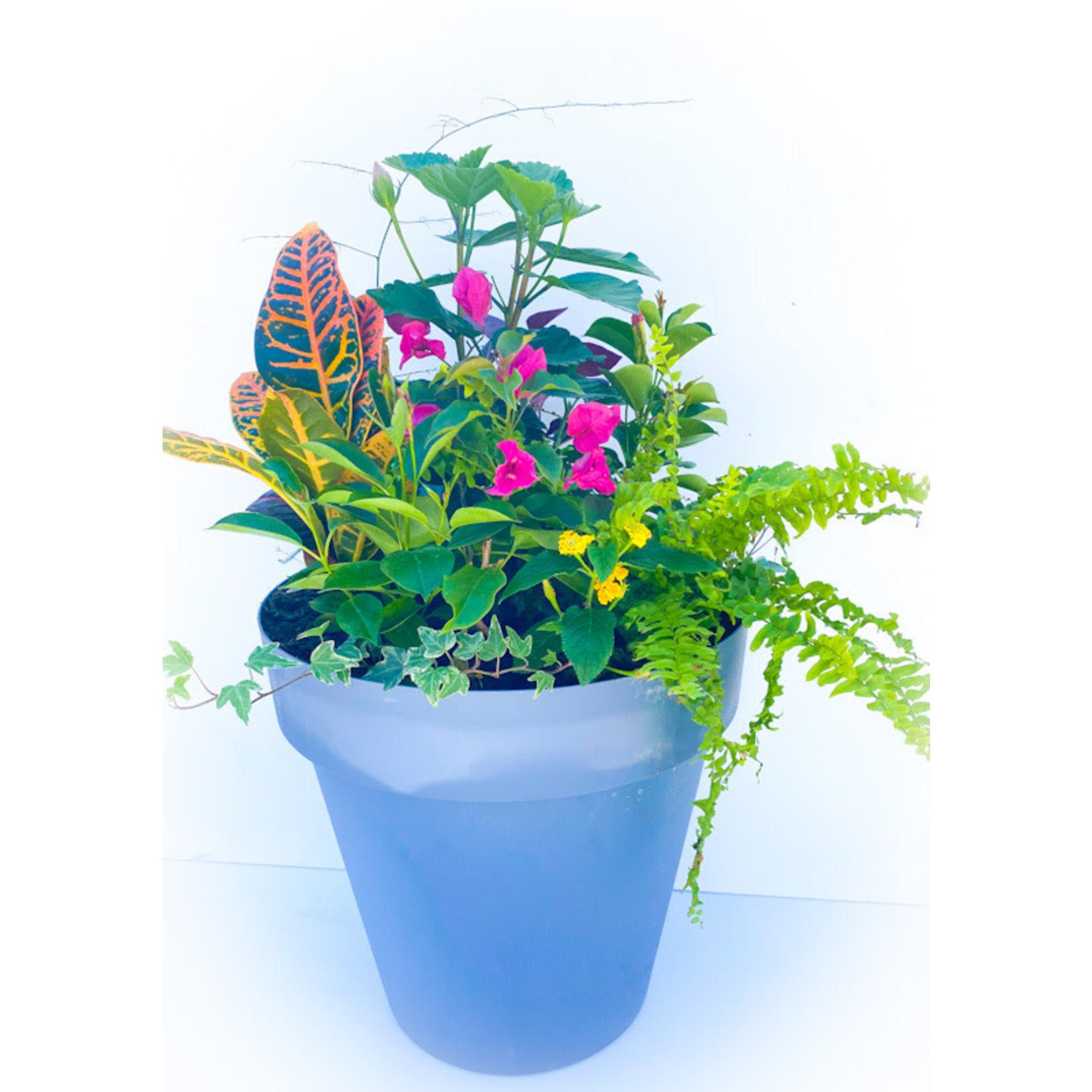 "Mixed Tropical Planter - 15"" tall"
